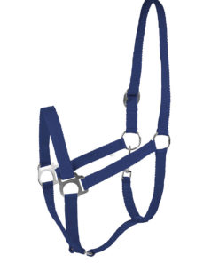 Basic soft nylon webbing halter with metal fittings. Adjustable at the headpiece with a snap closure under the cheek